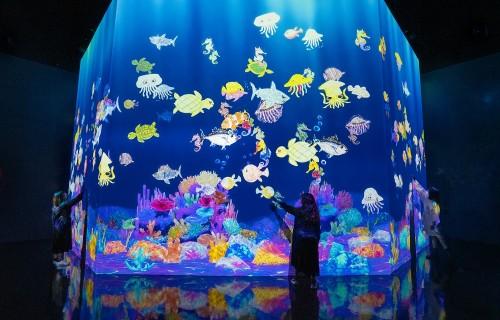 彩繪海洋 teamLab, 2020-, Interactive Digital Installation, Sound: Hideaki Takahashi, teamLab. © teamLab
