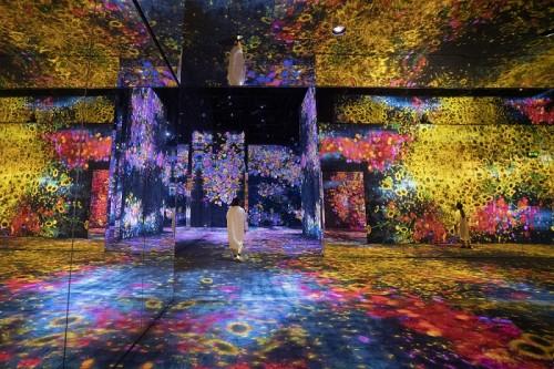 花與人的窪谷:迷失、沉浸與重生 / Valley of Flowers and People: Lost, Immersed and Reborn , 2020, Interactive Digital Installation, Endless, Sound: Hideaki Takahashi © teamLab